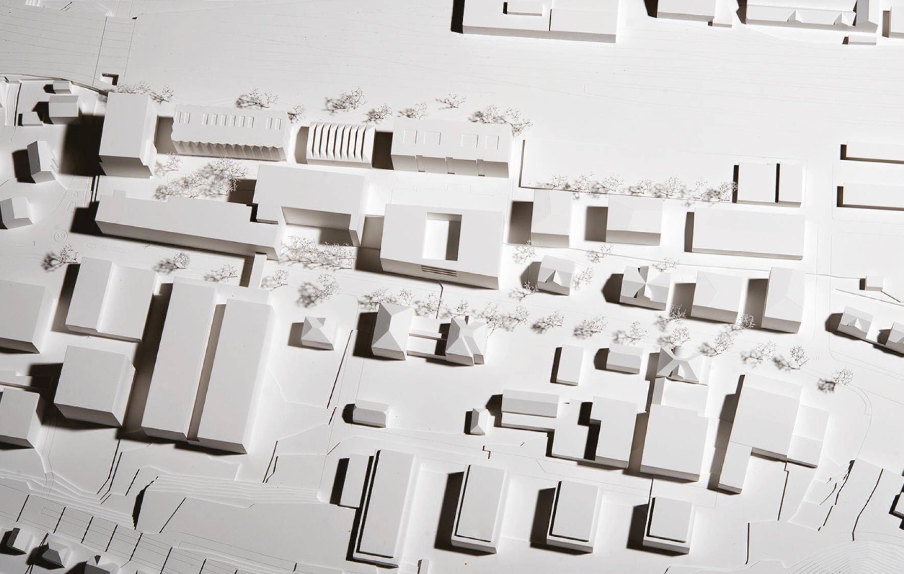Arealentwicklung «Suttergut Nord», Burgdorf, Camponovo Baumgartner Architekten