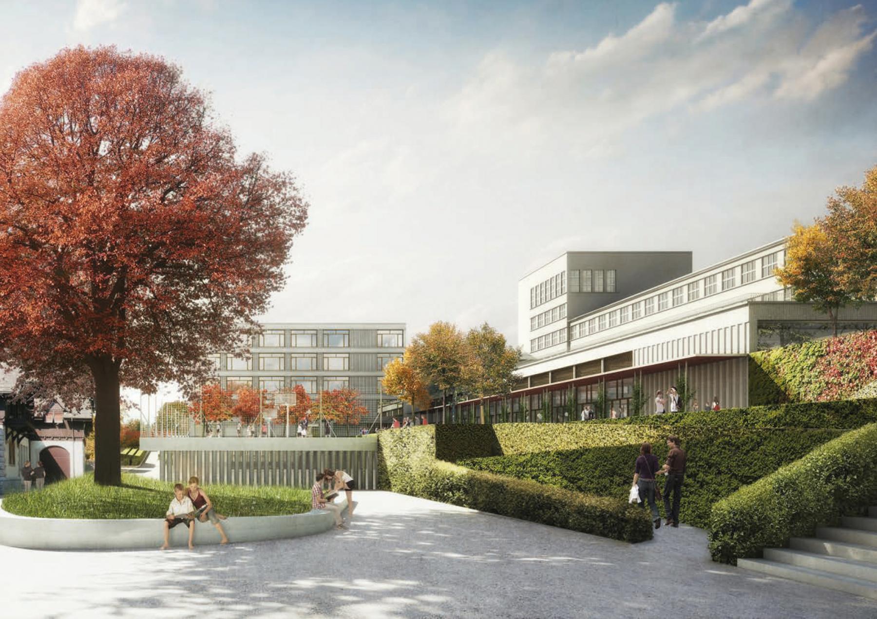 Sekundarstufenzentrum Burghalde, Baden, Masswerk Architekten, BLAUE BLUME