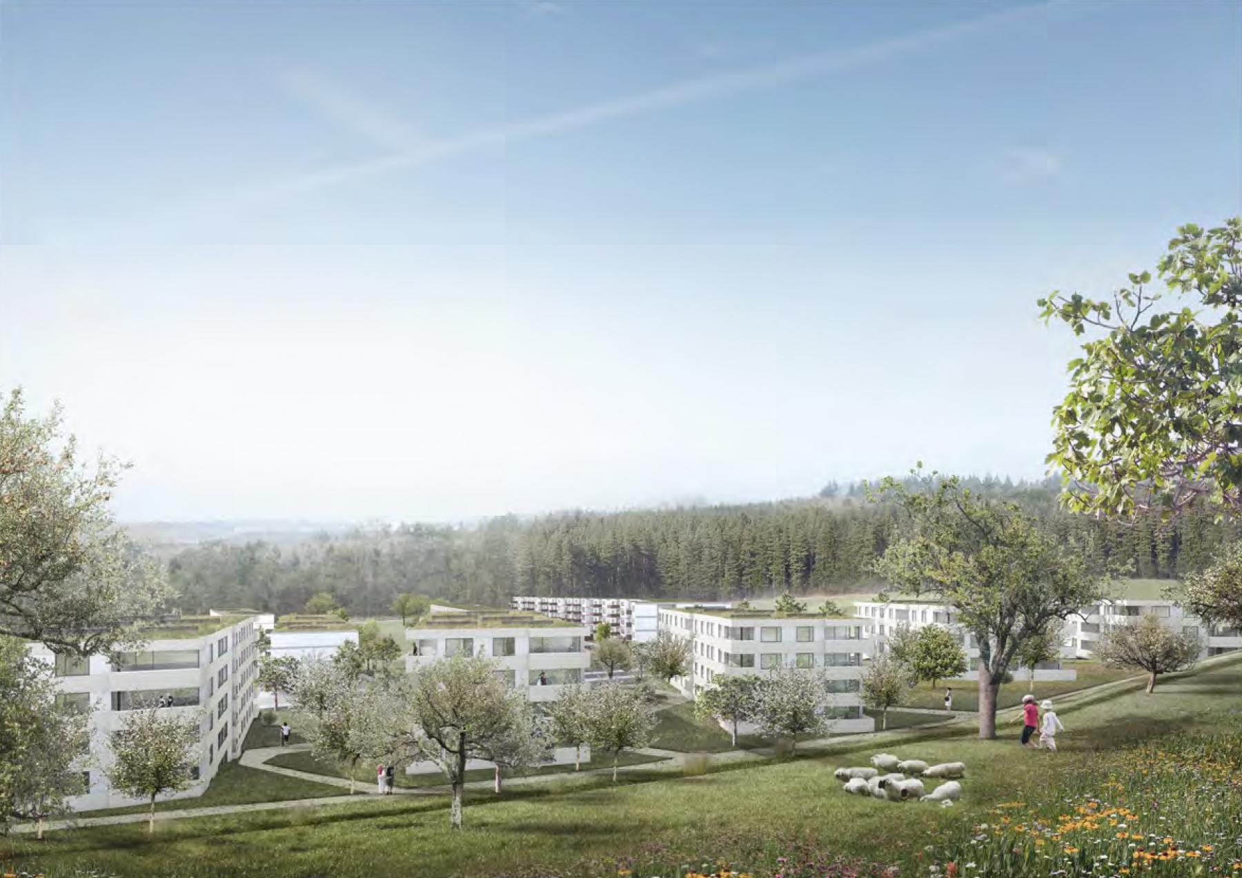 Wohnen im Ried, Köniz, Blue Architects und Ruprecht Architekten, ABEROT