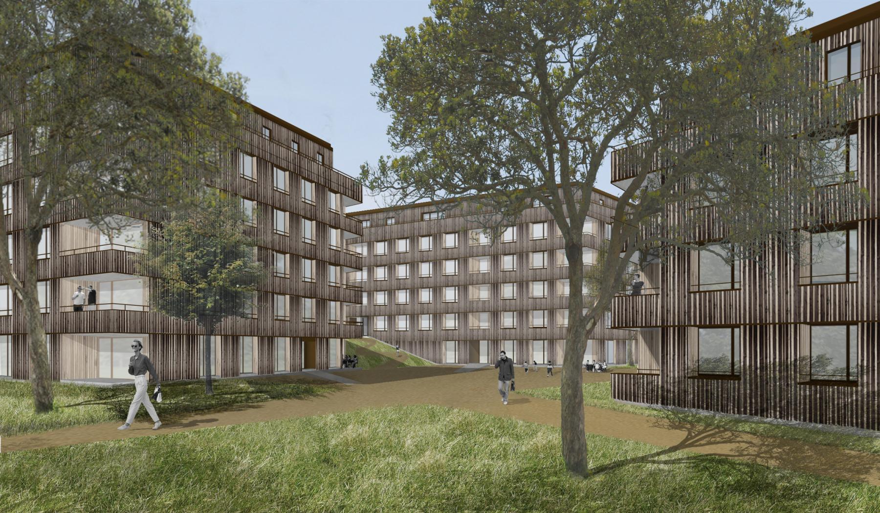 Construction de logements pour étudiants et d'une crèche, quartier «En Cojonnex», Lausanne, MPH architectes, Clairières