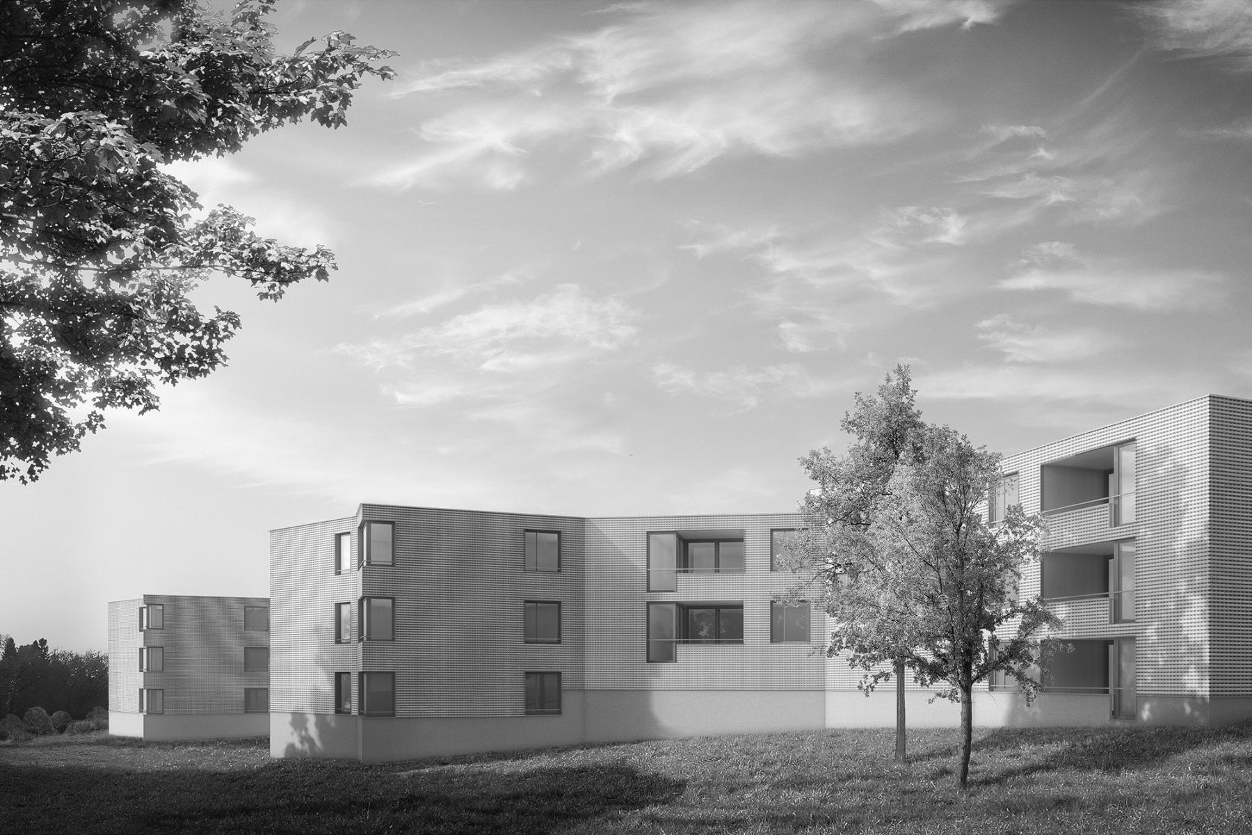 Construction de logements destinés aux personnes travaillant à la douane, Vernier (architecture + paysagisme), ahaa Heierle Andreas, Atelier für Architektur weber + brönnimann AG, IVY