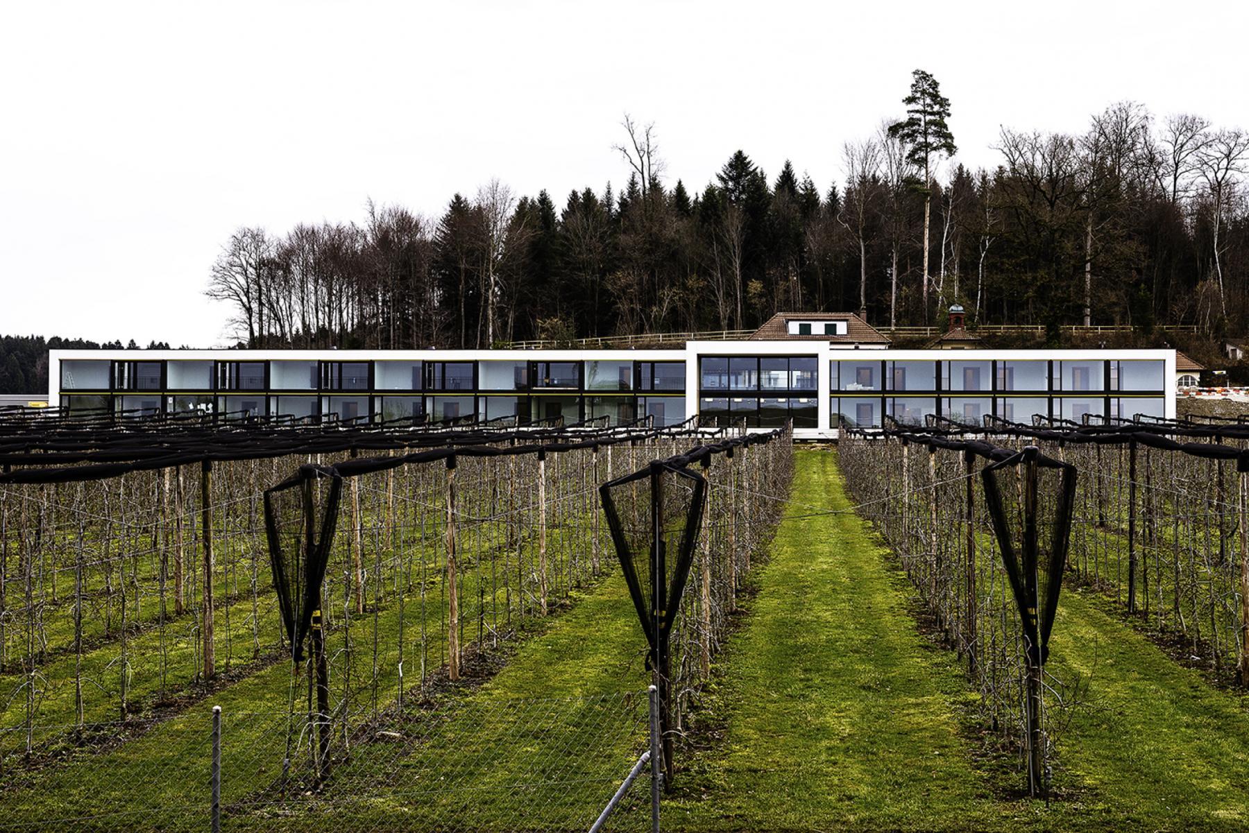 Regionales Wohn- und Pflegeheim St. Niklaus, Koppigen, ARGE zurfluh architekten, AMZ Architekten, panorama