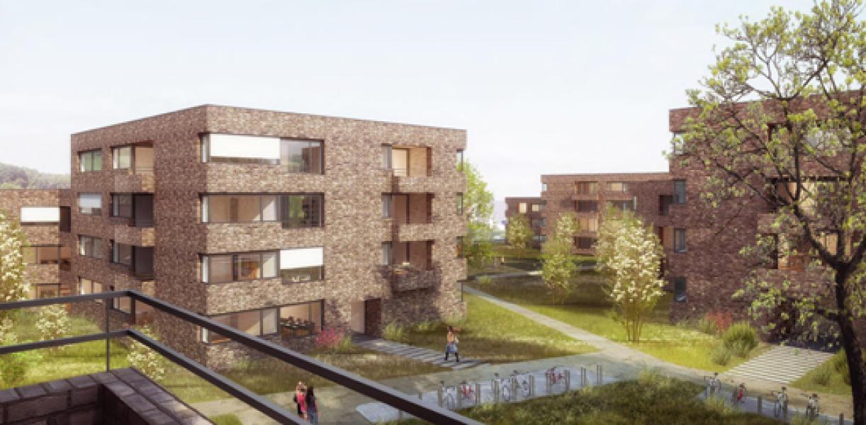 Das Siegerprojekt von Herzog Architekten AG, LYRA Architekten AG, Zürich und asp Landschaftsarchitekten AG, Zürich: Die Häuser stehen in einem grosszügigen Park. Dank der eingeschnürten Gebäudeform erscheinen d