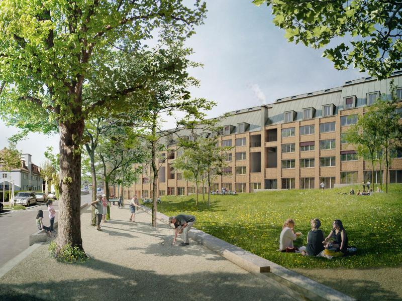 Siegerprojekt «Wipkinger»: Der Park ist als grosse Wiese mit Baumgruppen konzipiert; entlang der Rosengartenstrasse ein schattiger Vorplatz. (Visualisierung: Atelier Scheidegger Keller)